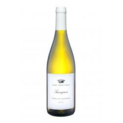 Côtes de Gascogne 2016 blanc